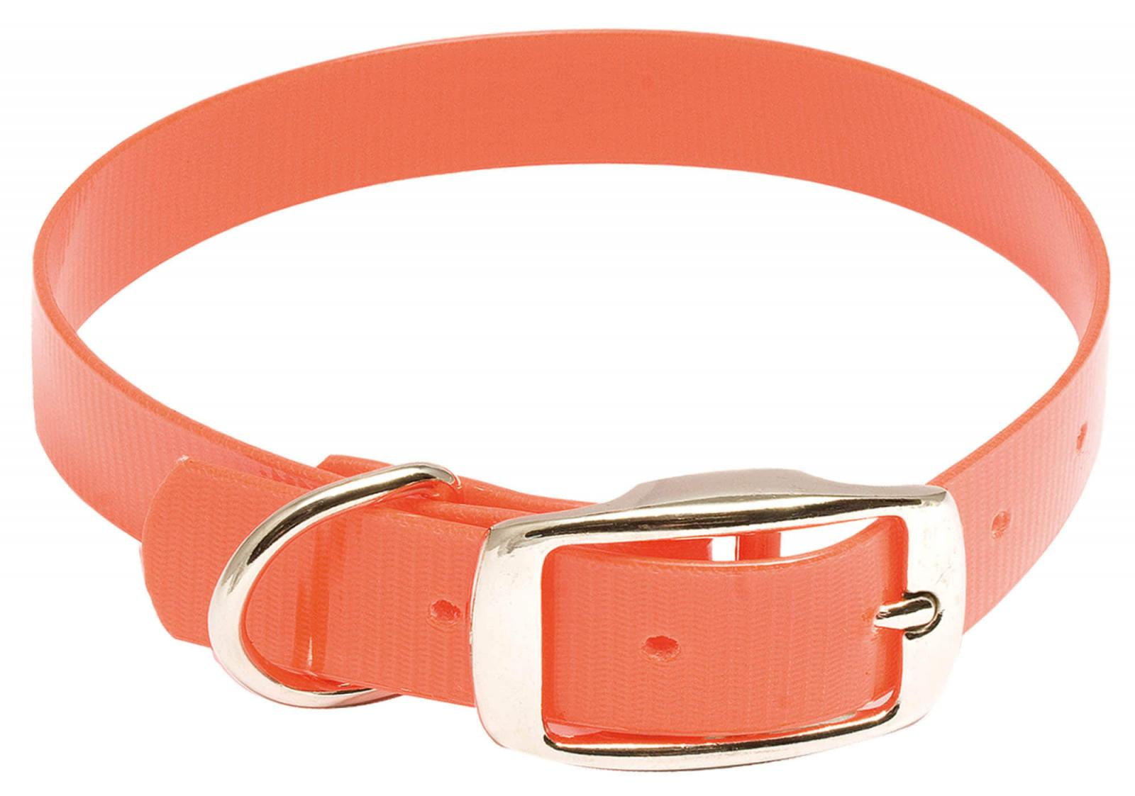 Collier Orange Fluo HIFLEX - COUNTRY 20mm x 40 cm