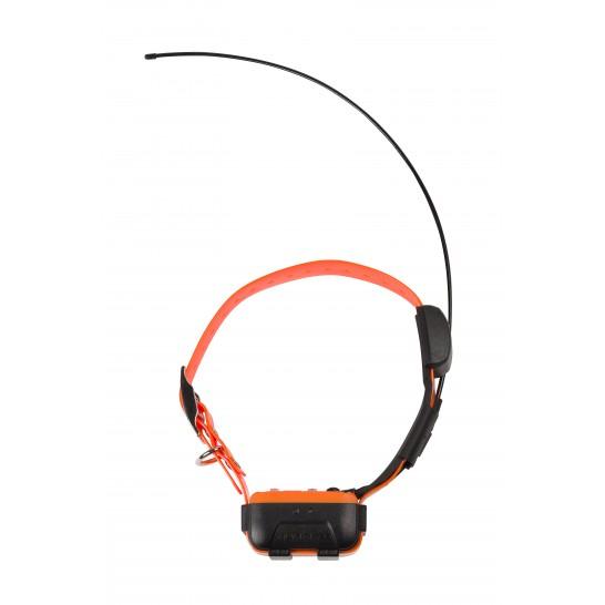 Collier supplémentaire Canicom GPS NUM'AXES