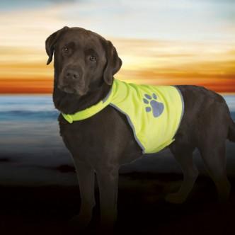 Gilet SAFETY Jaune pour chien