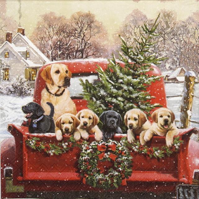 Serviettes en papier AMBIENTE Famille Labrador
